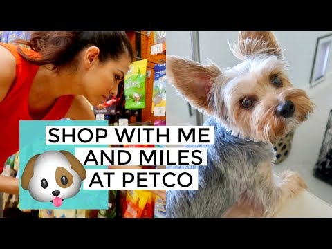 SHOP WITH ME & HAUL AT PETCO 2018 || SHOPPING WITH MILES OUR YORKIE