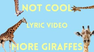 More Giraffes   Not Cool (Lyric Video)