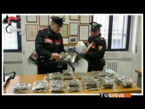 I programmi cresciamo magri in Minsk