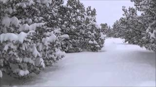 Big Time Snow In Oregon