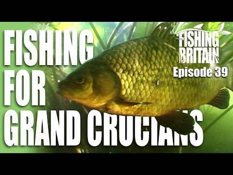 Grand Crucian Carp – Fishing Britain, episode 39