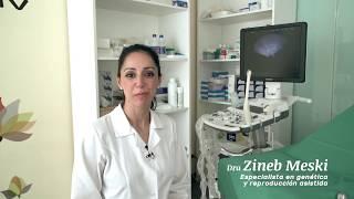 Zineb Meski -  Equipo médico de las clínicas de reproducción asistida EasyFIV - Zineb Meski