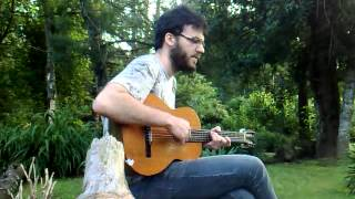 Damien Rice - The Blower´s Daugther (cover)