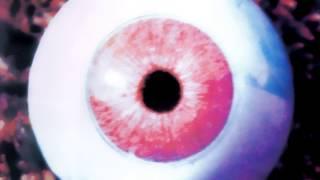 Anekdoten - Nucleus (HD)