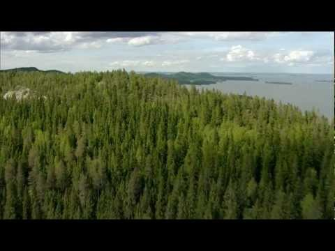 Jean Sibelius - Finlandia - Soome