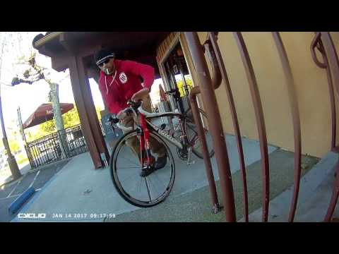 Bike Thief Caught on Fly12