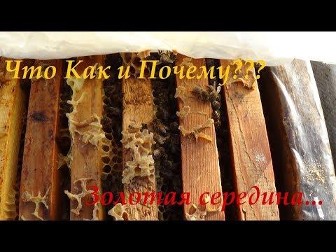 Канди Мёд Сироп замена Зимовалой Пчелы