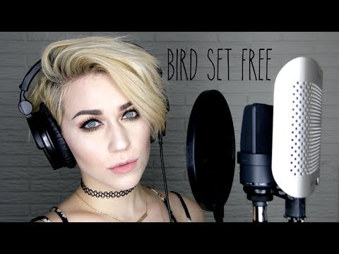 Bird Set Free - Sia (Live Cover by Brittany J Smith)