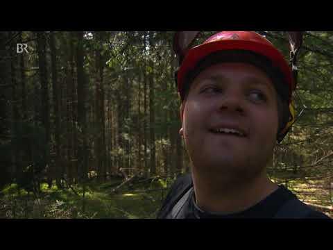 Brennholz - Ein Film aus dem Bayerischen Wald