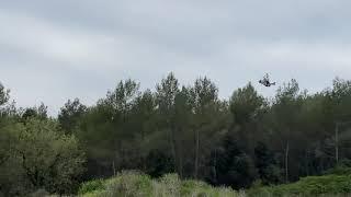 RacerX Twig XL FPV Drone Landing.