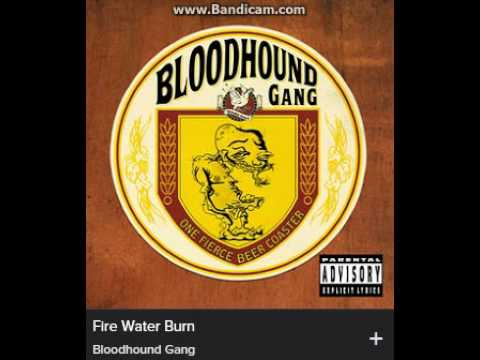 Música Fire Water Burn