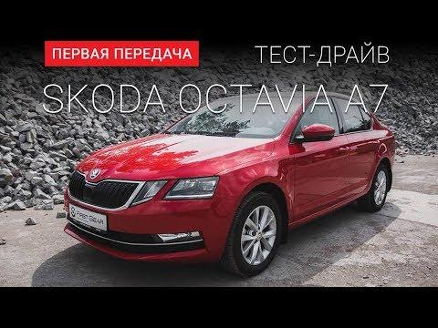 Skoda  Octavia Лифтбек класса C - тест-драйв 4