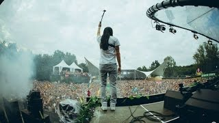 Steve Aoki Live At Tomorrowland 2014   Dim Mak Stage Set