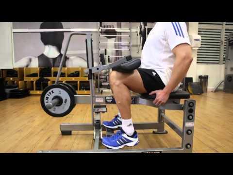 CALF - Machine Seated Calf Raise - G.A.M.E (HD)
