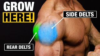Shoulder Exercise for Bigger Shoulders (SIDE AND REAR DELTS!)
