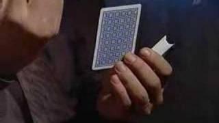 "Почти все о казино (программа ""Сканер"")."