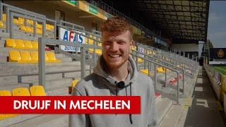 'Wilde avontuur' | Druijf bij KV Mechelen