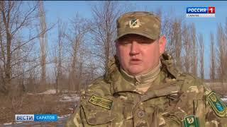 Комитет по охоте и рыболовству саратовской области