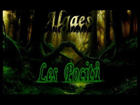 Algaes - Algaes - Les pocitů