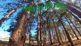 SPIRIT OF THE PINES (FPV FREESTYLE)