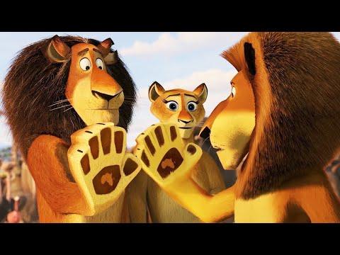 Madagascar: Escape 2 Africa (2008) - Alex Meets His Parents | Makunga's Plan
