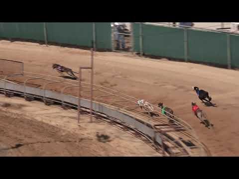 Race 54