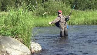 Рыбалка хариуса на севере