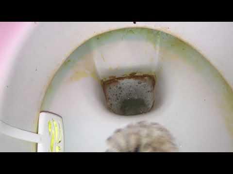 Urinstein in der Toilette entfernen mit Gebissreiniger Tabs (Zahnreinigungstabs) Anleitung