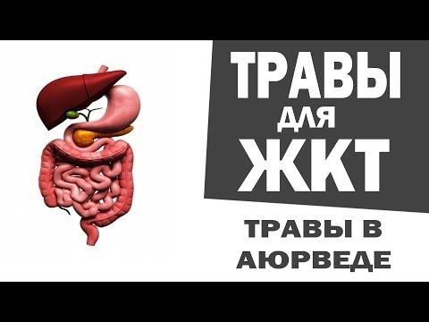 Что можно кушать при гепатите в и с