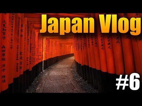 Poslední den v Kyotu! - Japan Vlog #6
