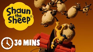 Download Video Shaun the Sheep - Season 3 - Episodes 1-5 [30 MINS] MP3 3GP MP4