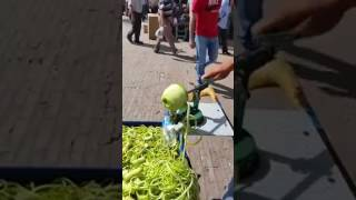 Amazing Fruit Seller  Bezzaticom  2017
