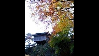 「行道山浄因寺」穴場紅葉スポットinAshikaga栃木県足利市