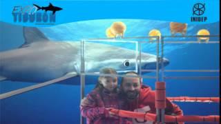DIA 2 Expo Tiburon103