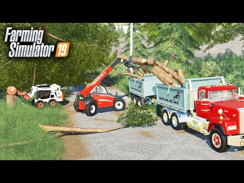 FS19- TORNADO CLEAN UP FOR OLD LADY! (TREES DOWN EVERYWHERE) - The