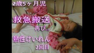 2歳5ヶ月児 救急搬送、再び…熱性けいれん2回目