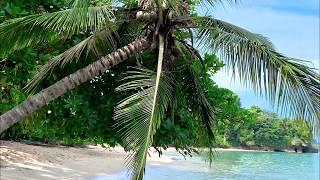 Playa Punta Uva, Costa Rica