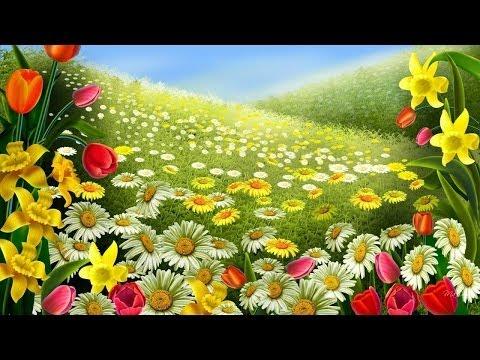 mp4 Beauty Rose Wallpaper, download Beauty Rose Wallpaper video klip Beauty Rose Wallpaper