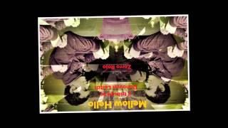 Zorro Rojo - Colours (Tributo a Donovan Leitch)