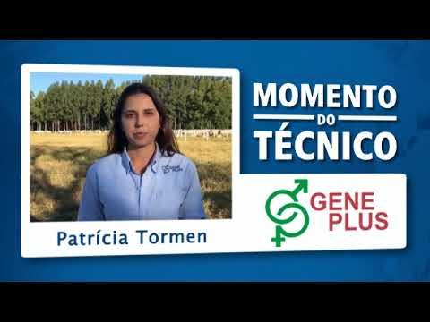 Momento do Técnico Patricia