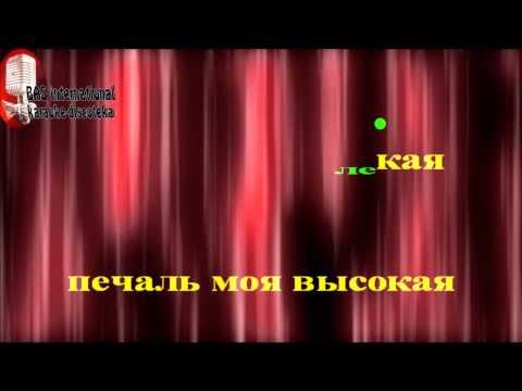 Дмитрий Маликов   Звезда Моя далекая karaoke