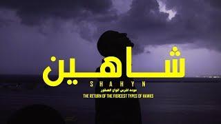 مازيكا SHAHYN - THE RETURN OF THE FIERCEST TYPES OF HAWKS   شاهين - عودة اشرس انواع الصقور تحميل MP3