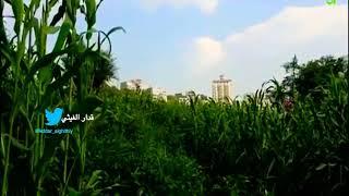 preview picture of video 'فندق اب جاردن (اليمن مدينة_اب) 2018 HD الاطلالة المميزه جديد'