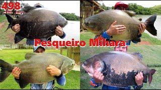 Pescaria de Gigantes no Pesqueiro Mihara - Fishingtur 498