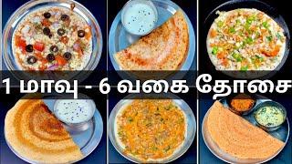 ஒரே மாவில் 6 வகை தோசை ரெடி😋  6 South Indian Dosa Recipes   Breakfast   Dinner   Dosa Recipe In Tamil