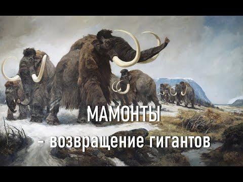 """документальный фильм """"Мамонты — возвращение гигантов"""""""