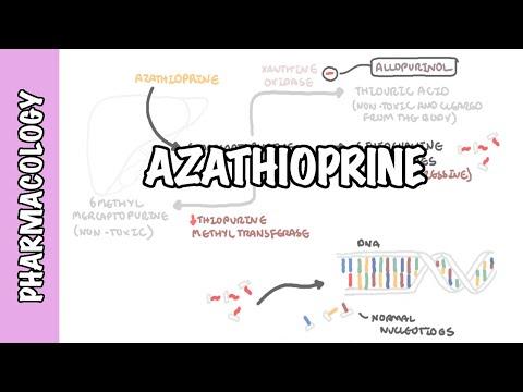 Azatiopryna - farmakologia, mechanizm działania, działania niepożądane