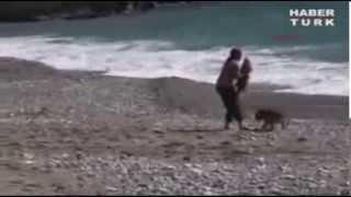 Собака спасает младенца от опасных волн в Турции