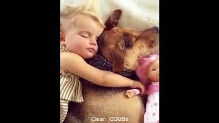 Прикольные видео | COUBs funny videos #16