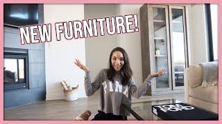 I Got My DREAM Furniture! (Home Decor Update)